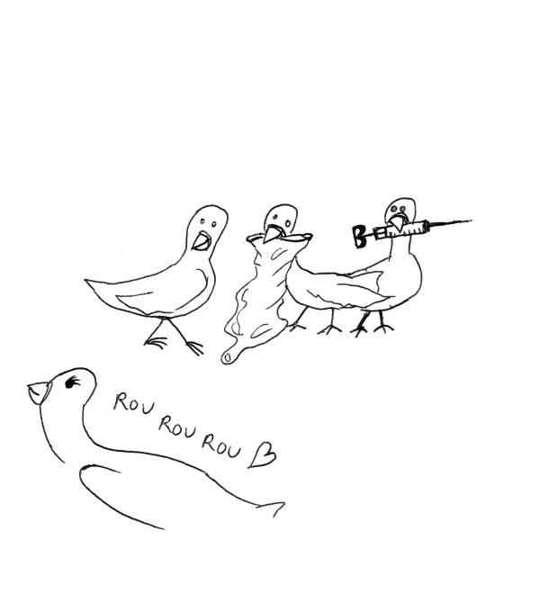 pigeons-gazette-atomique-4